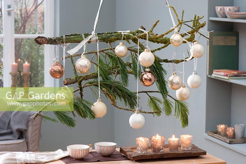 Hanging Christmas decoration: lichen-tree branch and twigs of Pinus decorated with Christmas tree