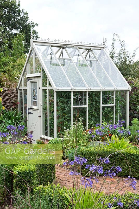 Greenhouse with stained glass windows in a small rural garden, with large Tomato plants