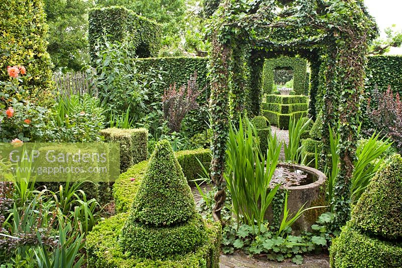 Formal garden with perennial borders, topiary and hedging. Frank Thuyls garden.