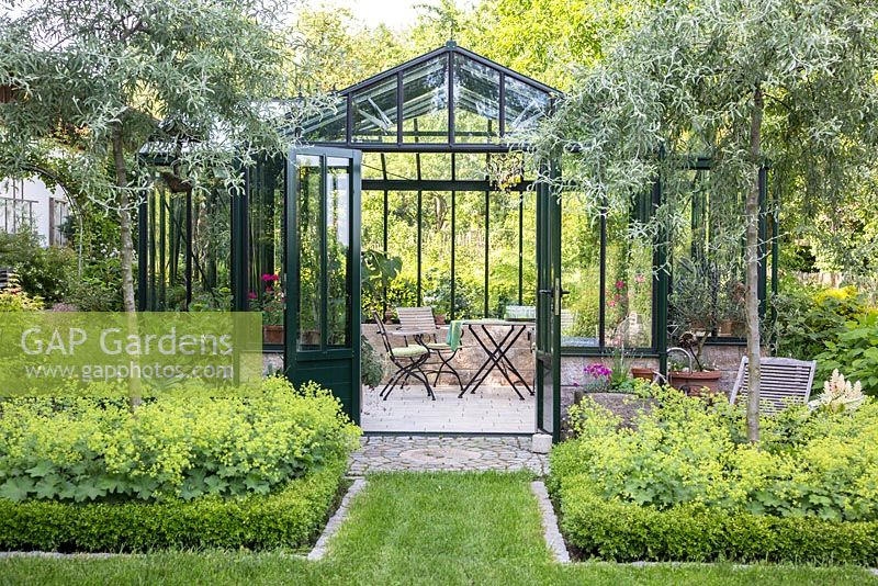 The glasshouse entrance with grass path is flanked by two willow leaved pears in box framed borders, Alchemilla mollis, Buxus, Pyrus salicifolia 'Pendula'