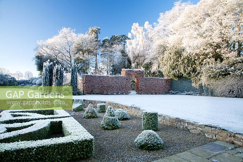 View from box parterre across lawn to frosted border, trees and beech hedge