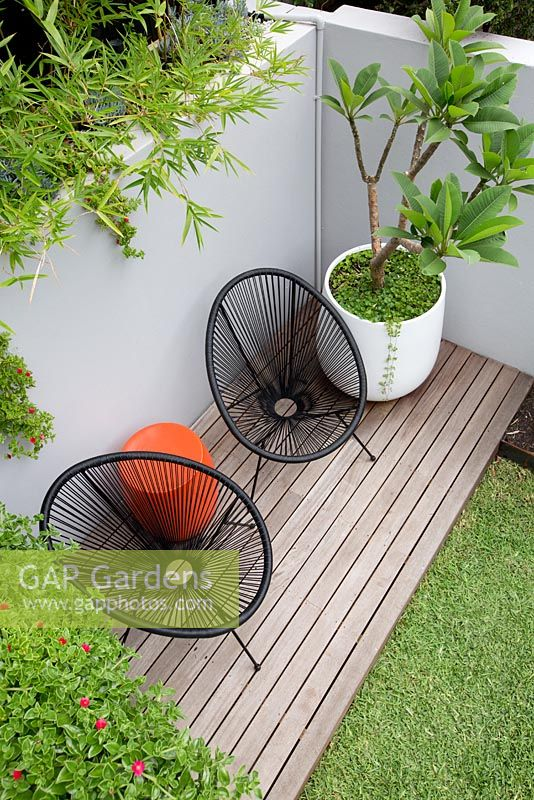 An overhead view of a timber deck with two black Acapulco chairs, an orange plastic drum table a round white plastic pot with a Plumeria, Frangipani in it in front of a grey painted cement rendered retaining wall and a screen of Slender weavers bamboo.