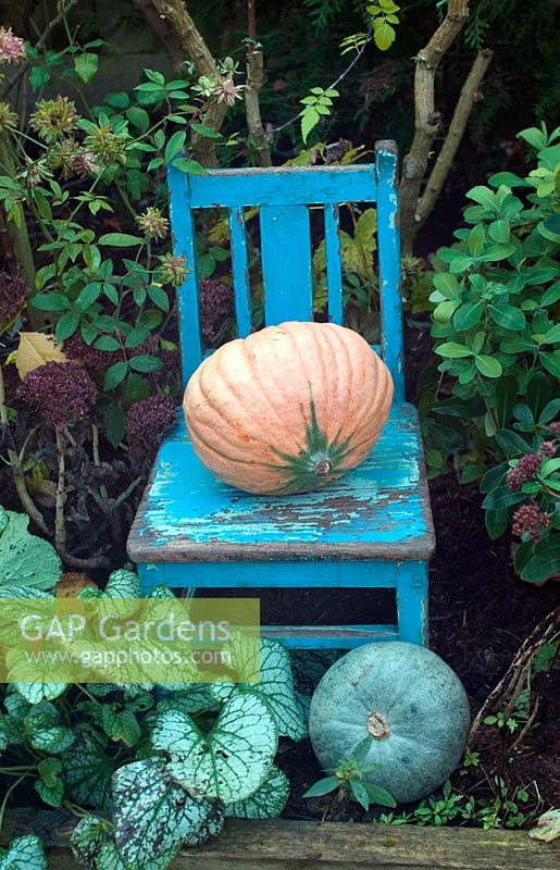 Painted blue chair with pumpkins