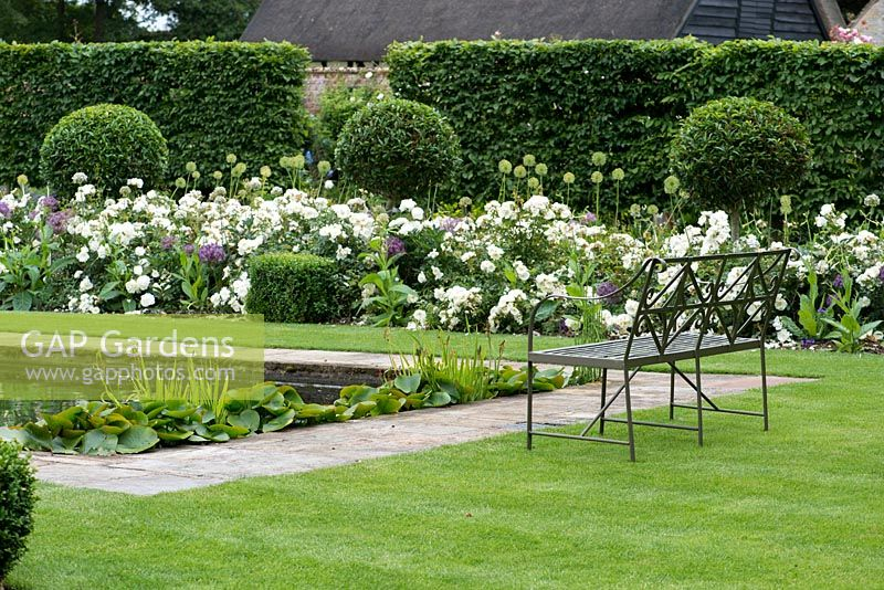A formal garden with reflecting pool and fountain between box edged beds planted with Rosa 'White Flower Carpet' and evergreen Prunus lucitanica standards.