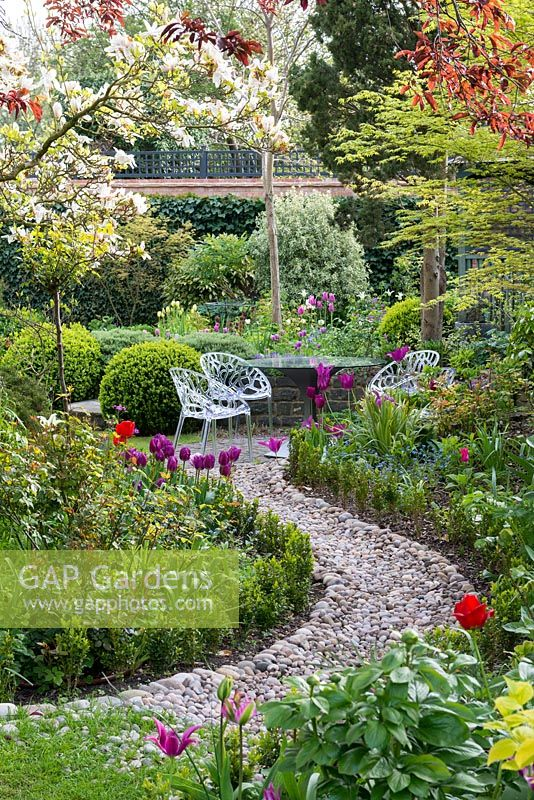 A walled town garden with curved pebble path leading to a circular patio seating area. Alongside, mixed borders are planted with tulips, box and forget-me-nots.