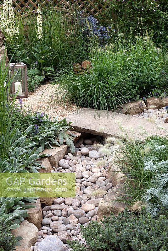 Dry stream in The Drought Garden at RHS Hampton Court Palace Flower Show 2016