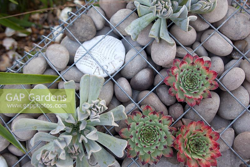 Hand carved message stones in a gabion in the Home at Last Garden at RHS Hampton Court Flower Show 2016