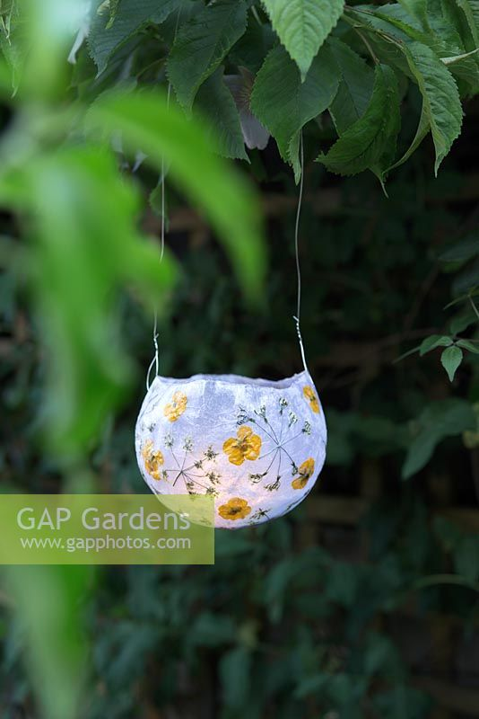 Gap Gardens Diy Paper Lanterns With Dried Flowers Feature By Victoria Firmston Specialising In Garden And Plant Stock Photography