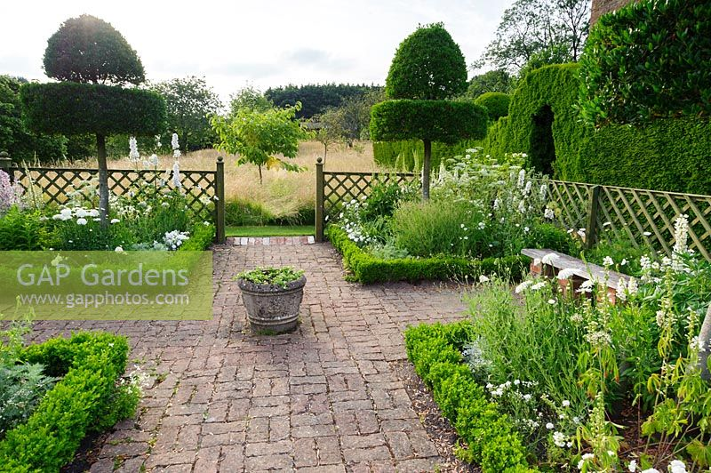 The White Garden features clipped Phillyrea latifolia standing in box edged beds containing Allium nigrum, Leucanthemum x superbum 'Fiona Coghill', lupins, dianthus and tall white delphiniums. Felley Priory, Underwood, Notts, UK