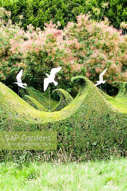 Topiary wave-form hedge in Buxus Sempervirens crafted by Head Gardener Andrew Woolley. Seagulls by Diane Maclean, Farleigh House, Farleigh Wallop, Hampshire. June. Designer Georgina Langton.