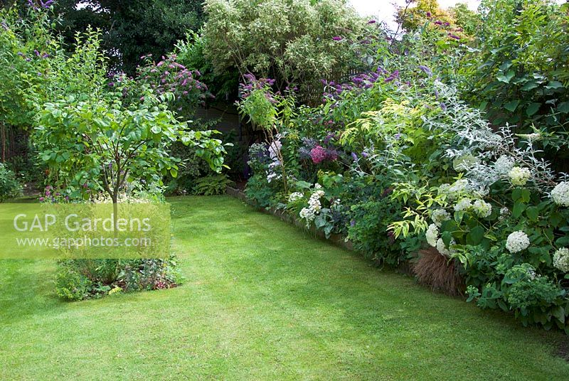 View of garden with veg beds and borders