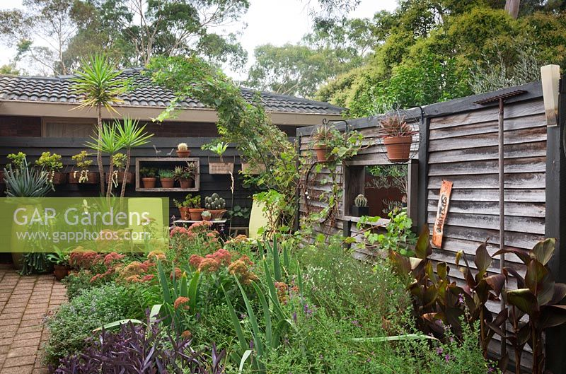 Wide shot of a cottage garden bed looking back towards the house enclosed by a recycled freestanding timber wall, featuring pots mounted to the walls planted with succulents.