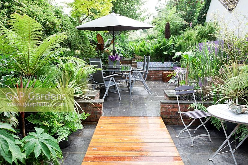 Small modern urban garden full of exotics with decking walkway over slate paving. Metal tables and chairs with a border of Tetrapanax papyrifer, syn. Aralia papyrifer, Dracaena marginata 'Tricolor Rainbow', Dicksonia antarctica, Trachycarpus fortunei, Ferns, Bamboo, Cordyline australis and Ensete ventricosum 'Maurelii'. Pachyphytum oviferum - Moonstones - in pot on table.
