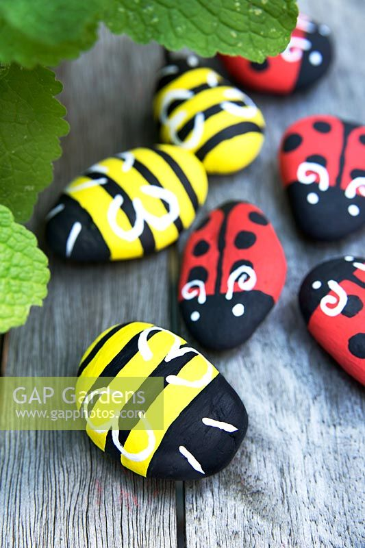 Garden craft making painted Bumble bees and Ladybirds with stones. Paint on wings and antenna in white