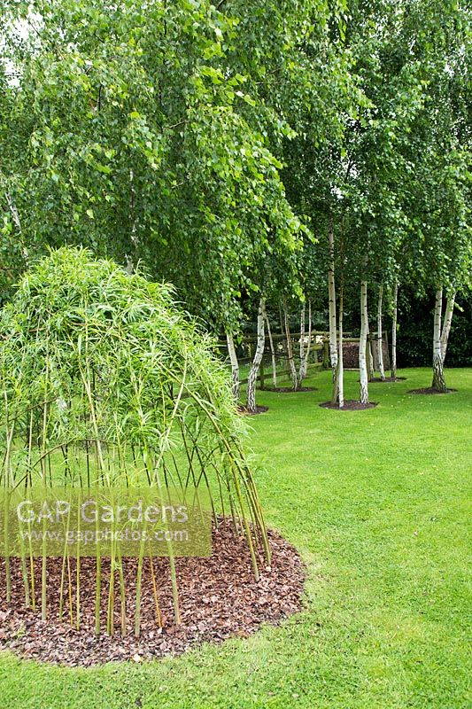 A woven Willow structure with viewing holes made for children to play in, with Birch trees in background