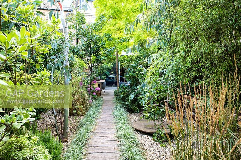 View from small garden down the path to living area - Hackney garden London