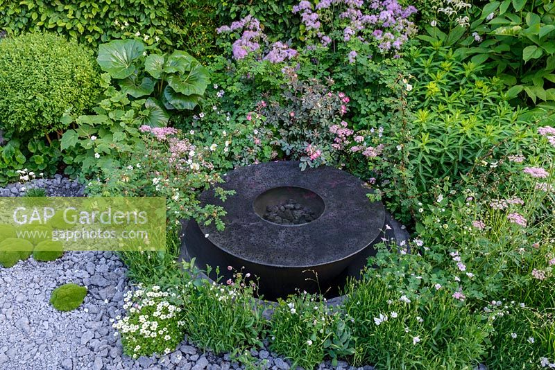 Round water feature made of black basalt concrete amongst planting of Rosa glauca, Rosa sericea subsp. omeiensis f. pteracantha, Scleranthus biflorus, Chaerophyllum hirsutum 'Roseum' and Thalictrum incrushed concrete gravel - The Linklaters Garden for Maggie's - RHS Chelsea Flower Show 2017 - Designer: Darren Hawkes -Gold