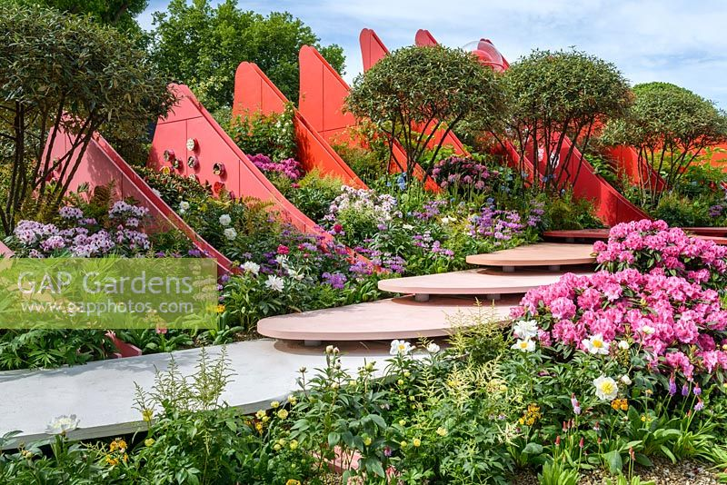Multi-stemmed Viburnum rhytidophyllum, Rhododendron and   Paeony in Silk Road Garden, Chengdu, China - RHS Chelsea Flower Show 2017 - Designer: Laurie Chetwood and Patrick Collins Sponsor: Creativersal