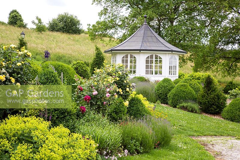 Rose garden with white pavilion, Alchemilla mollis, clipped Buxus, Lavandula, Rosa and Taxus baccata with a meadow in the background