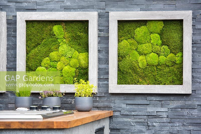 Living pictures with moss in stone frames and herbs in pots in the outdoor kitchen against modern black slate stone wall in the outdoor kitchen. Contemporary Bee and Butterfly Garden -