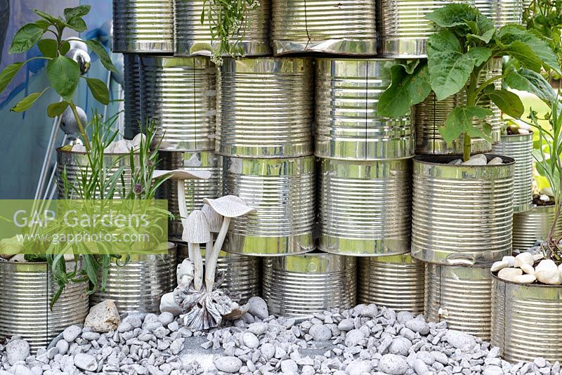 Tin cans as planters with Sunflowers and lavender - School Gardens - RHS Malvern Spring Festival 2017