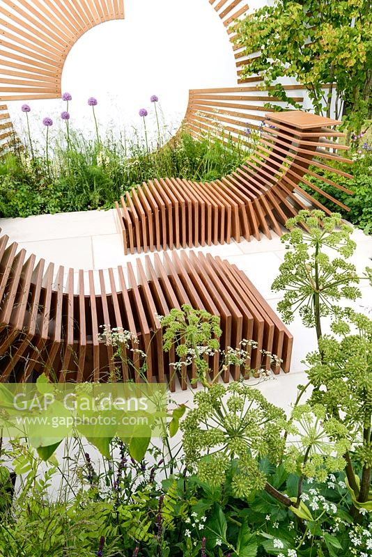 Allium and Anthriscus sylvestris surround a slatted recliner - Spa Garden - Molecular Garden, RHS Malvern Spring Festival 2017