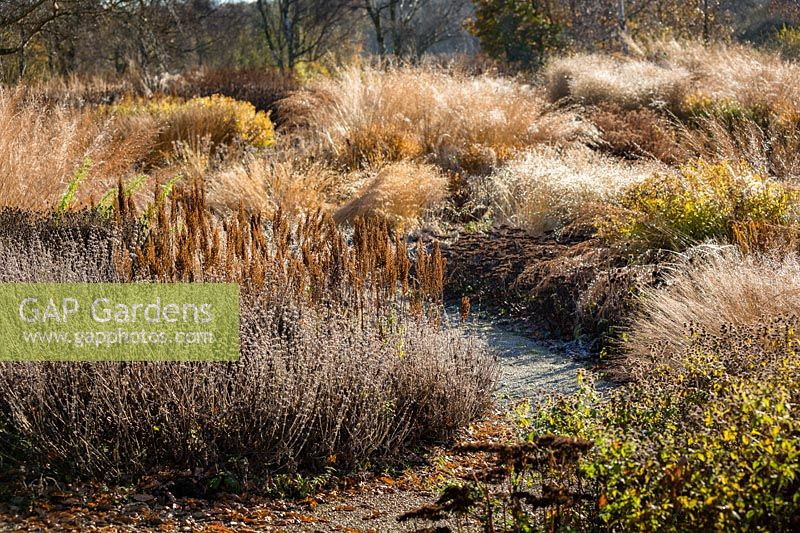 The Milennium Garden at Pensthorpe in Norfolk
