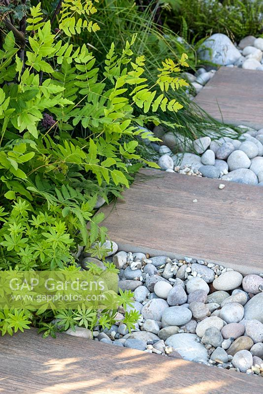 Green foliage planting along white gravel and natural stone path - BBC Gardener's World Live, Birmingham 2017 - Big Fish Landscapes Garden -Designer: Cherry Carmen, Cherry Carmen Garden Design -Gold