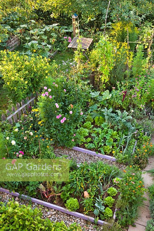 Mixed planting of flowers, vegetables and herbs
