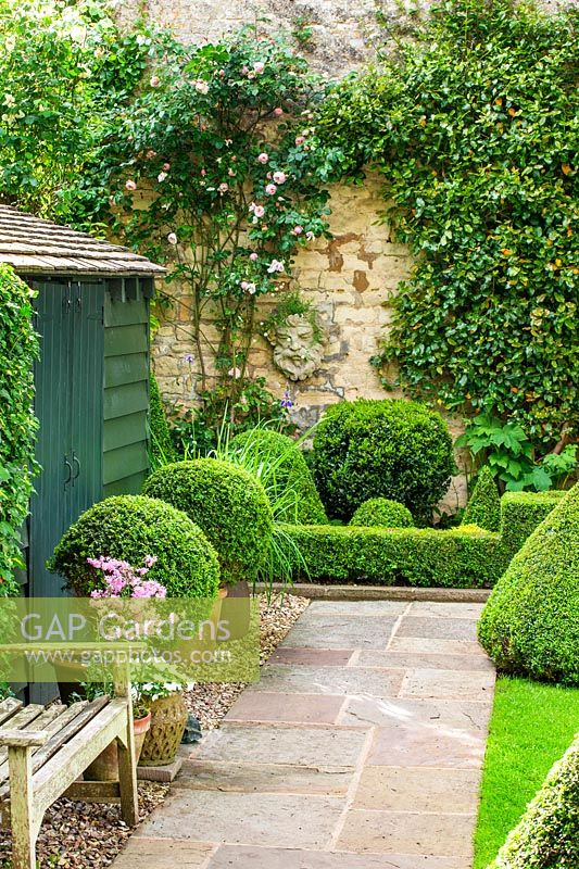 Garden shed with Box topiary, Oxfordshire, June.
