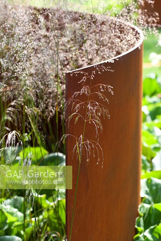 Contemporary garden with curved rusted corten steel panel and Deschampsia cespitosa 'Bronzeschleier' grasses RHS Hampton Court