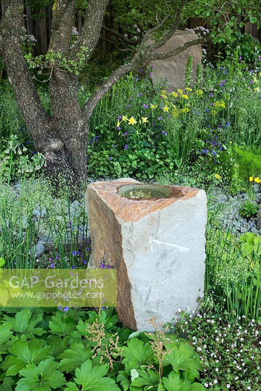 Roughly hewn sandstone boulder with bird bath in The M and G Garden, RHS Chelsea Flower Show 2016. Designer Cleve West.
