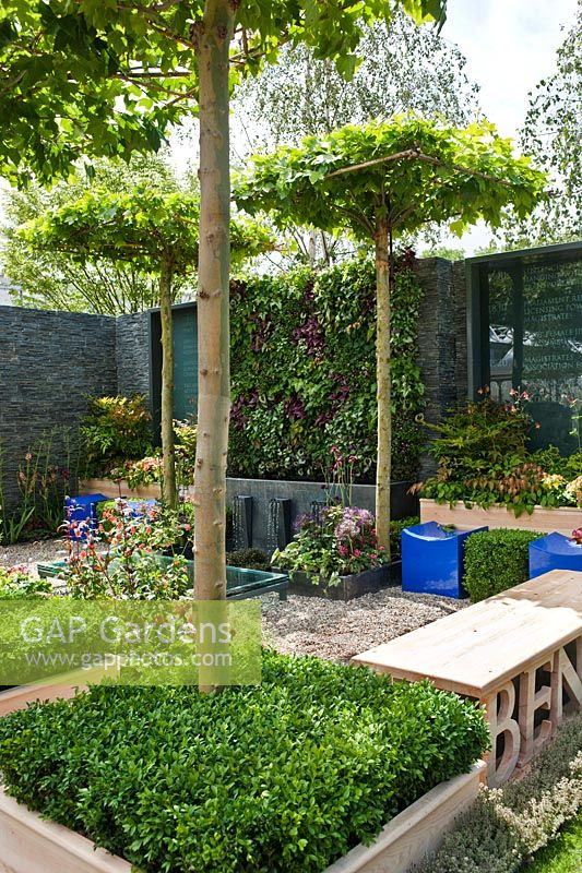 The Magistrates' Garden at RHS Chelsea Flower Show 2011 by Kate Gould