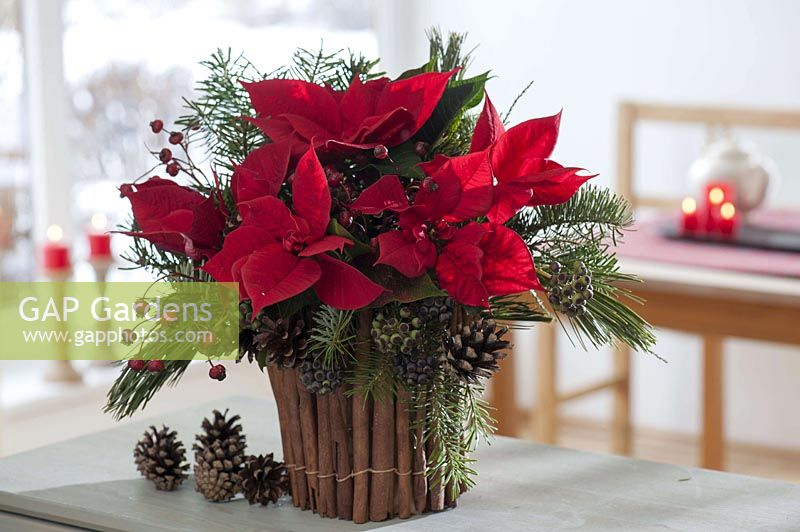 Christmas bouquet in vase with cladding cinnamon sticks
