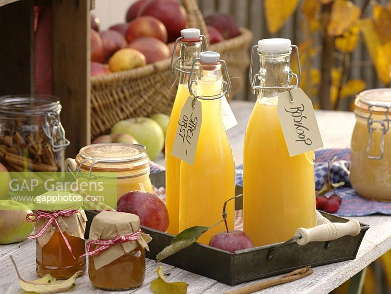 Bottles with freshly squeezed apple juice, jars of jelly and apple sauce