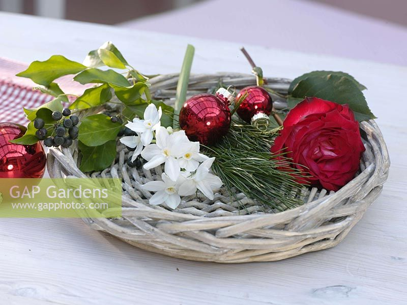 Fragrant red and white Christmas table decoration - pink ( roses ), Narcissus 'Ziva'