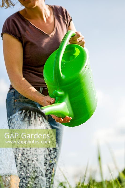 Young woman working in the garden. watering the garden