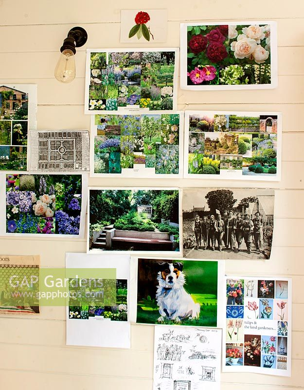 Inspirational garden pictures in office.
