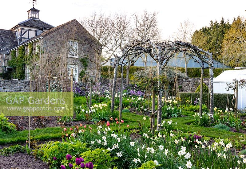 GAP Gardens - Grass path runs through the cutting garden below ...