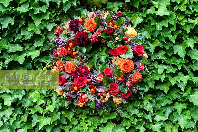Summer wreath - designed and made by Susan Wright - hung on Hedera-covered wall.
