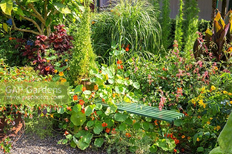 View of green bench tucked into flowering summer border.