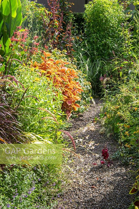View of gravel path leading along summer flowering border.