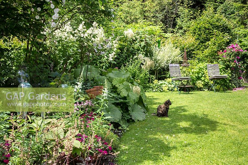 View of summer flowerbeds and borders.