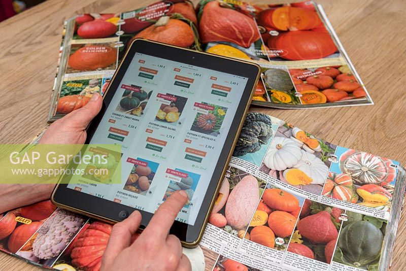 Person ordering vegetable seeds on a digital tablet.