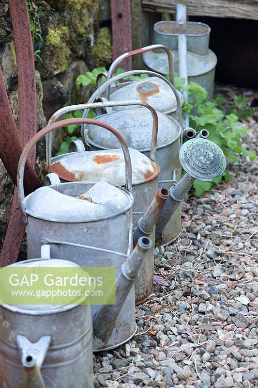 Row Of Old Watering Cans