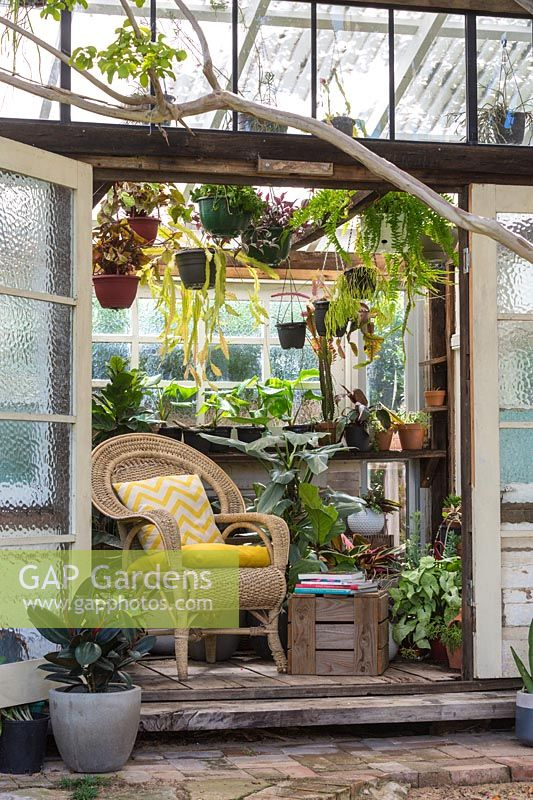 View into conservatory doorway to wicker chair and hanging houseplants.