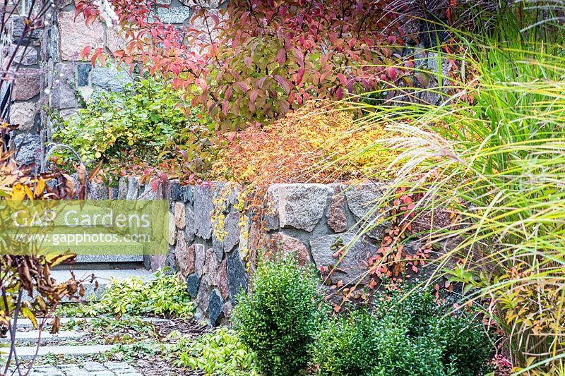 Gap Gardens Autumn Colours In Raised Border Image No