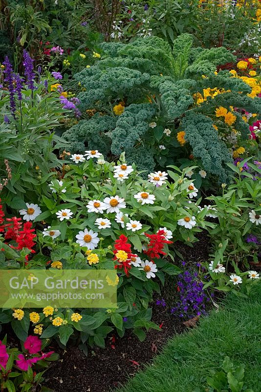 Vegetables to add interest to a summer flower border.