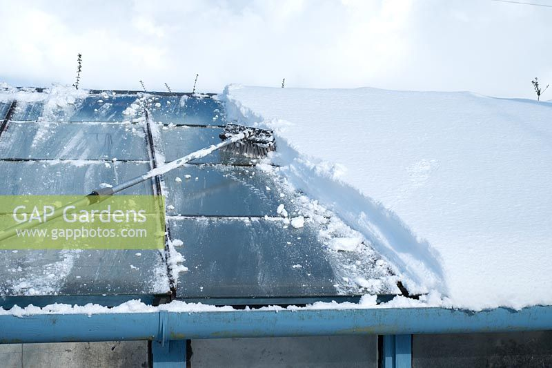 Removing snow from greenhouse roof using a long-handled broom