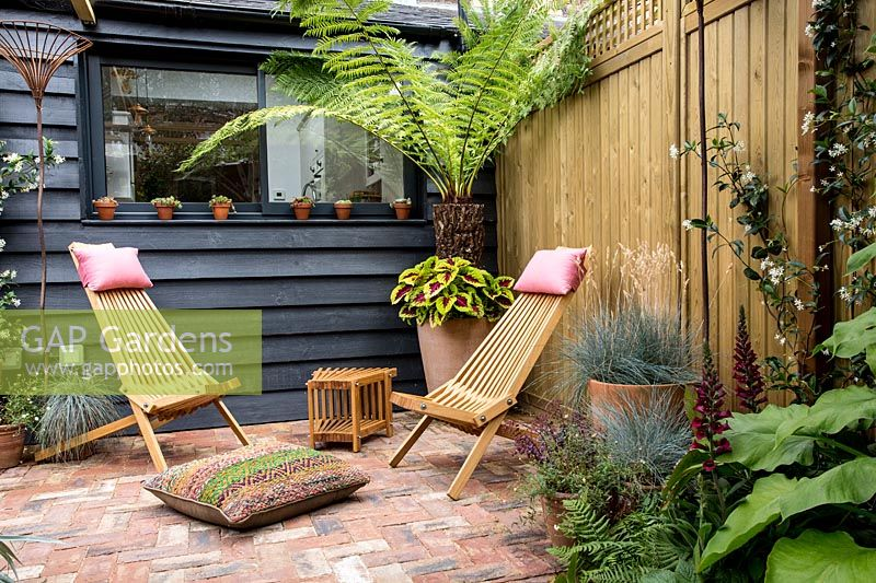 Patio garden with pergola, wooden garden office with mixed planting and loungers